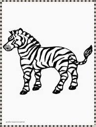 Small Picture 65 best Gambar Mewarnai images on Pinterest Zebras Animal