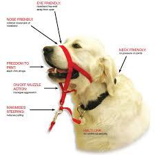 Halti Dog Padded Headcollar Stops Pulling Kindly Range Of Sizes