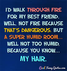Super Funny Quotes Enchanting I'd Walk Through Fire For My Best Friend Well Not Fire Because