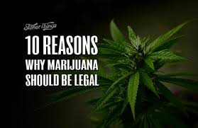why marijuana should be legalized essay reasons why marijuana should be legalized essay