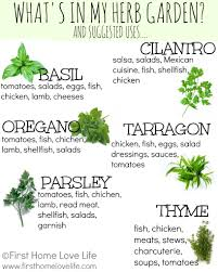 Uses Of Kitchen Garden Creating A Kitchen Herb Garden Gardens Herbs Garden And Kitchen