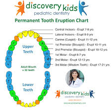 Permanent Tooth Eruption Pediatric Dentist In Frisco