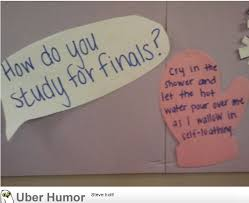 Finals Quotes Amazing I Also Study For Finals This Way Funny Pictures Quotes Pics