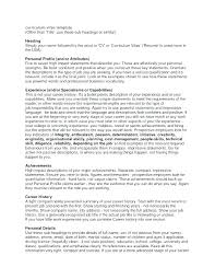 Personal Resume Examples Adorable Cv Personal Profile Examples Retail Sample Career For Resume Doc