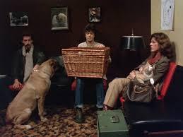 Basket Case/Review - The Grindhouse Cinema Database