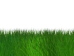 grass transparent background. Border Grass Seamless Transparent Background Free Grass Transparent Background N