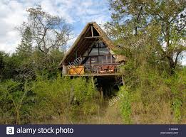 Hotels U0026 Resorts  Try The Most Appealing Destination Of Tree Treehouse Hotel Africa