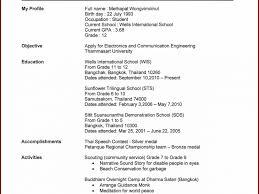 Resume Online Resume Template Excellent Build Online Printable A Website 55