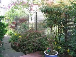 Hervorragendtschutz Garten Holz Im Gestalten Pflanzen Pflegen Mit