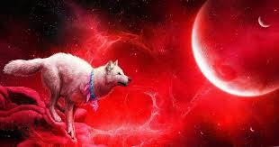 Support us by sharing the content, upvoting wallpapers on the page or sending your own background. High Resolution Blood Moon Wolf Wallpaper