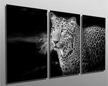 153 00 leopard b w portrait metal print wall art 3 panel split triptych hd aluminum on leopard metal wall art with northern pygmy owl metal print wall art 3 panel split triptych