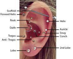 Top Ear Piercings In 2019 Ear Piercing Diagram Facial