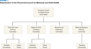Ontarios Provincial Council For Maternal And Child Health