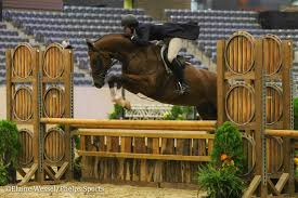 Patricia Griffith Rides Sonder to USHJA National Hunter Derby Victory -  Phelps Sports