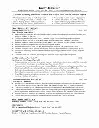 Junior Business Analyst Resume Sample Elegant Financial Analyst