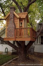 pete nelson s tree houses. Perfect Pete I Built My First Adult Treehouse During College In Colorado Springs  COlorado This Project For Pete Nelson S Tree Houses E