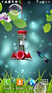 beautiful live wallpaper hummingbirds wallpaper colibries live