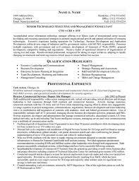 cto resume example sample chief baker resume