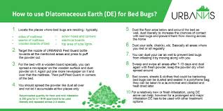 Arresting Getting Rid For Bed Bugs How Do U Get Rid Then Bed How ...