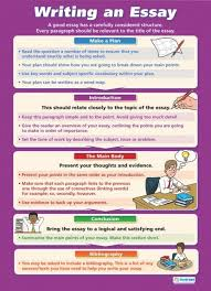 best functional skills posters images school  writing an essay poster