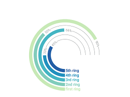 Radial Bar Graph Small Infographic For Data Visualization