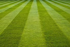 Mowing Patterns Custom How To Create Picture Perfect Lawn Mowing Patterns