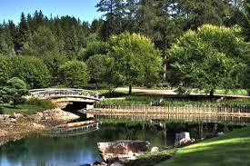 the japanese garden in edmonton s devonian botanic garden