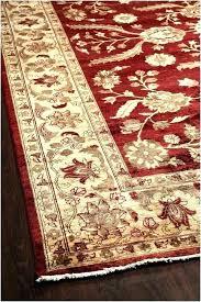 new outdoor rugs full size of x rug breathtaking rain red birds surya pad b