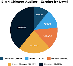 Accounting Career Progression Chart Definitive Big 4 Salary Guide From Consultant To Partner