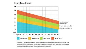 Aerobic Exercise Heart Rate Chart Yahoo Image Search