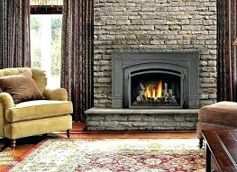 best gas fireplace insert reviews high efficiency wood burning fireplace reviews high efficiency gas fireplace insert