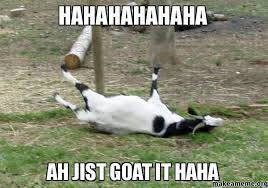 Goats are awesome - share your love of goats! - Page 5 - The Happy ... via Relatably.com