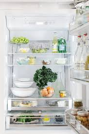 Introduction the refrigerator is among the home appliances that use the most energy. 5 Items You Didn T Know You Needed To Transform Your Fridge Haven