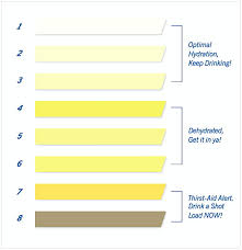 Urine Color Chart Cycling Studio