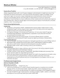 Executive Resume It Director Unique Board Of Directors Resume