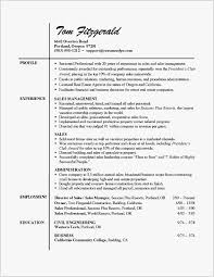 21 Profile Resume Examples Example Best Resume Templates