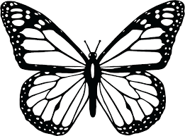 Butterfly Coloring Coloring Pages Of Butterflies And Flowers Cute