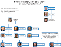 Medical Center Organizational Chart Bumc Diversity Organizational Chart School Of Medicine