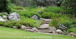 Small Picture Rock Garden Designs A Practical Guide