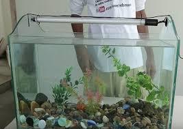 diy fish tank
