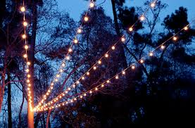 Christmas Lights In Yard By Horses At Night Stock Photo  Getty ImagesChristmas Lights In Backyard