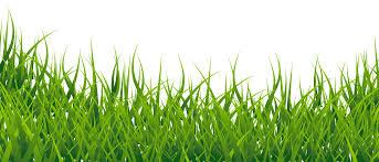 grass png. Fine Grass Throughout Grass Png O