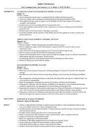 Management Support Analyst Resume Samples Velvet Jobs
