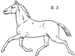 horses drawings easy.  Horses Step 3b U2013 How To Draw Horses Running  Trotting On Drawings Easy