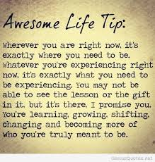 Awesome Quotes About Life Extraordinary Life Tip Quote