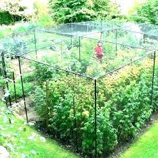 bug netting for plants garden insect netting garden netting bird netting garden bird netting t