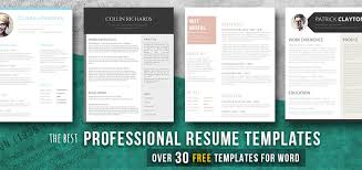 Professional Templates Professional Resume Templates Ideal For A White Collar Job Freesumes