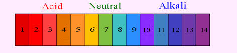 Color Chart For Universal Indicator What Is Universal Indicator Science Acids Bases And