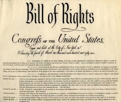 Image result for image us constitution