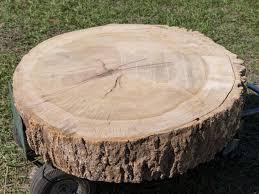 step 2 tree stump coffee table8
